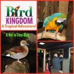 Field Trip: Bird Kingdom