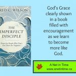 Review:The Imperfect Disciple