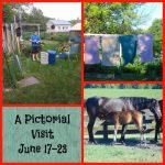 A Pictorial Visit June 17-23