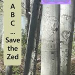 Save the Zed