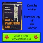Review: Way of the Warrior Kid