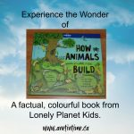 Review: How Animals Build