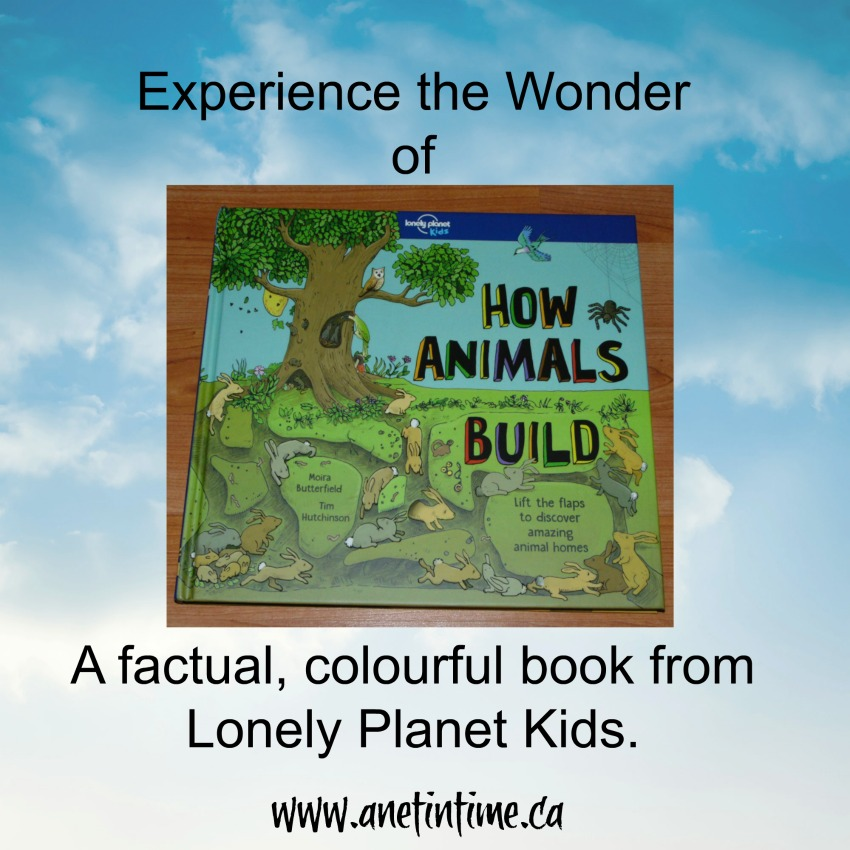 My review of a fantastic children's book on animals.  How Animals build