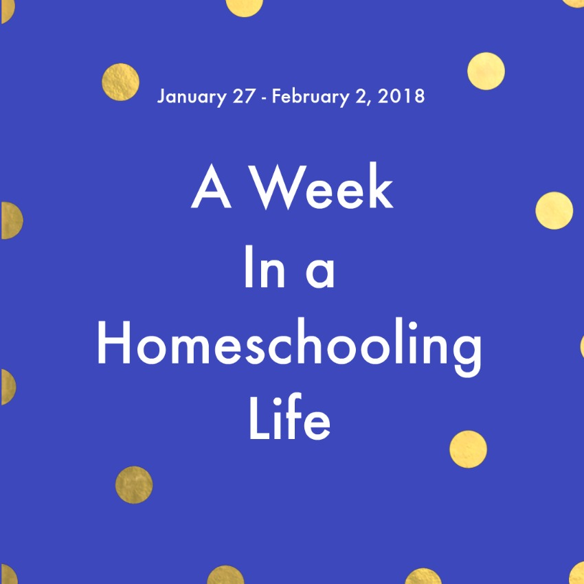 One week in the life of a homeschooling family