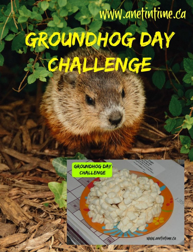 Learning about Groundhog day while doing a STEM challenge.