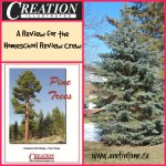 Review: Creation Illustrated