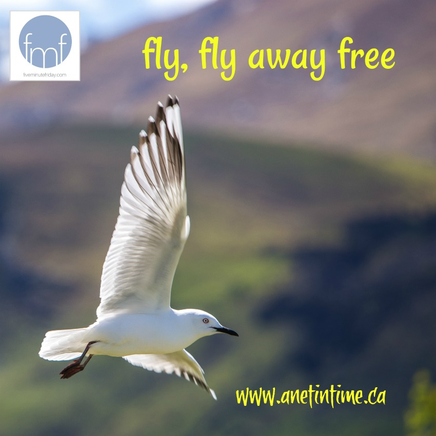 Fly, fly away free. A word prompt poem.