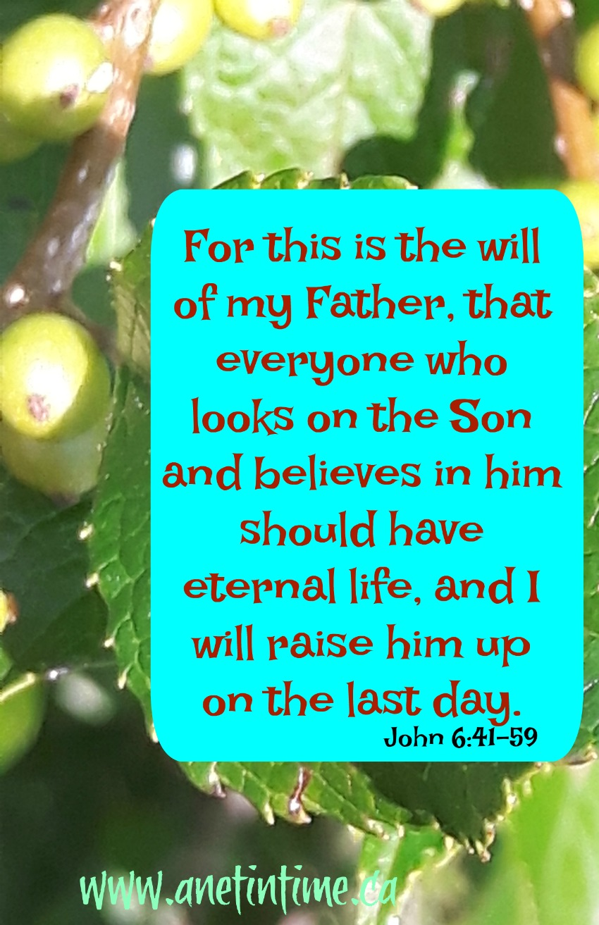This is the will of the father, a devotional from John 6
