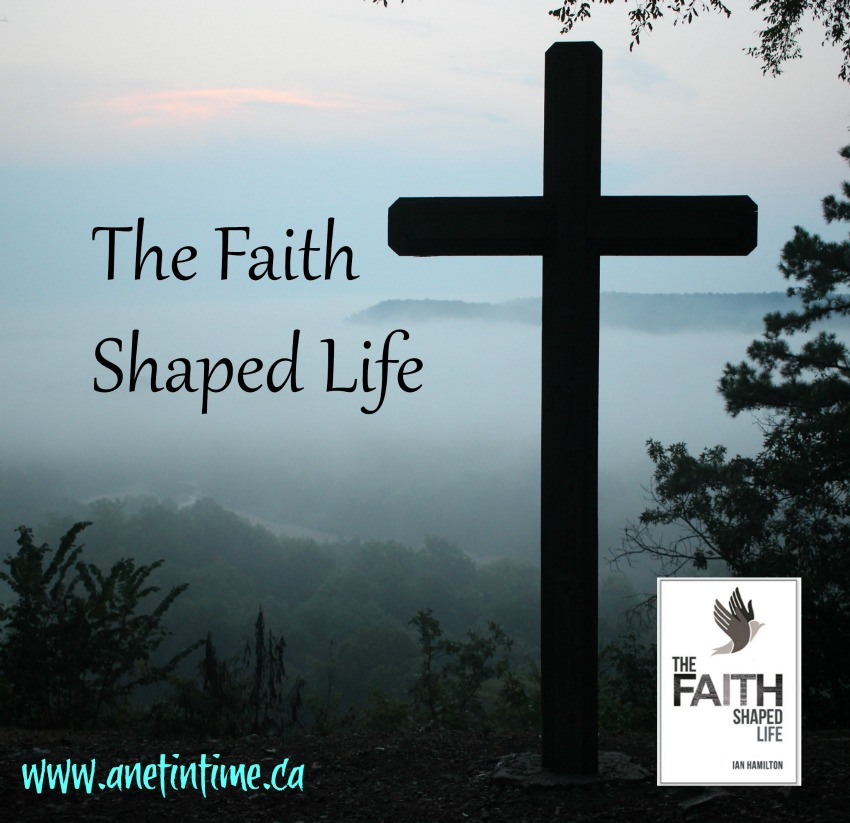 The Faith Shaped Life, book cover