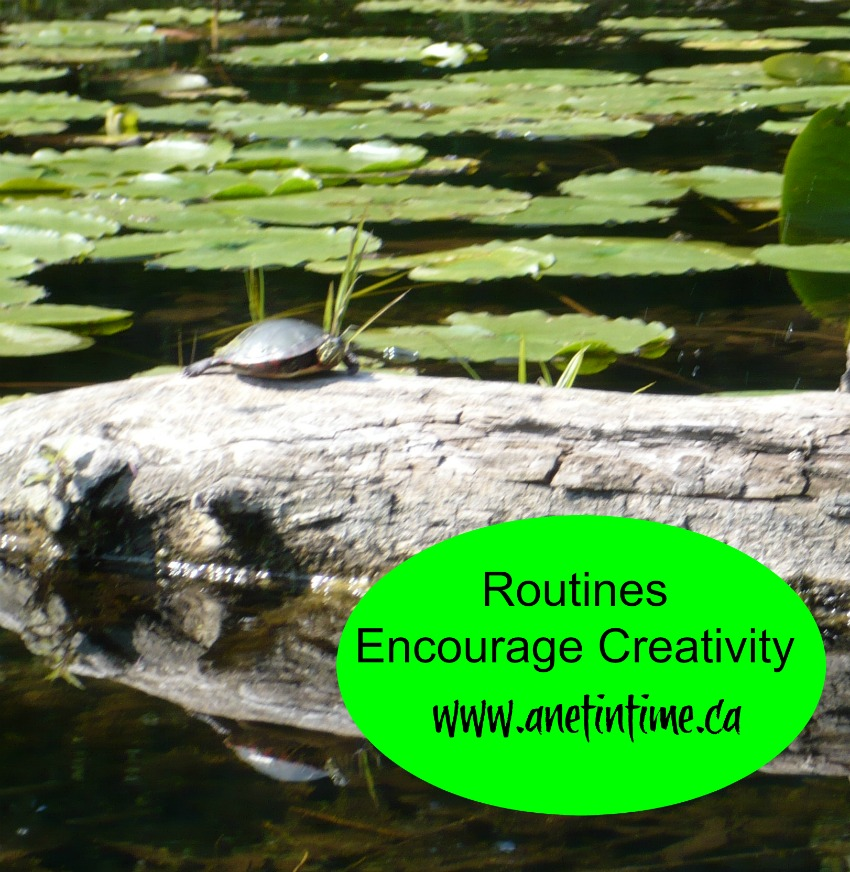 routines encourage creativity, write better by developing routines