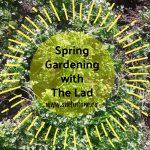 Gardening vs Book Work