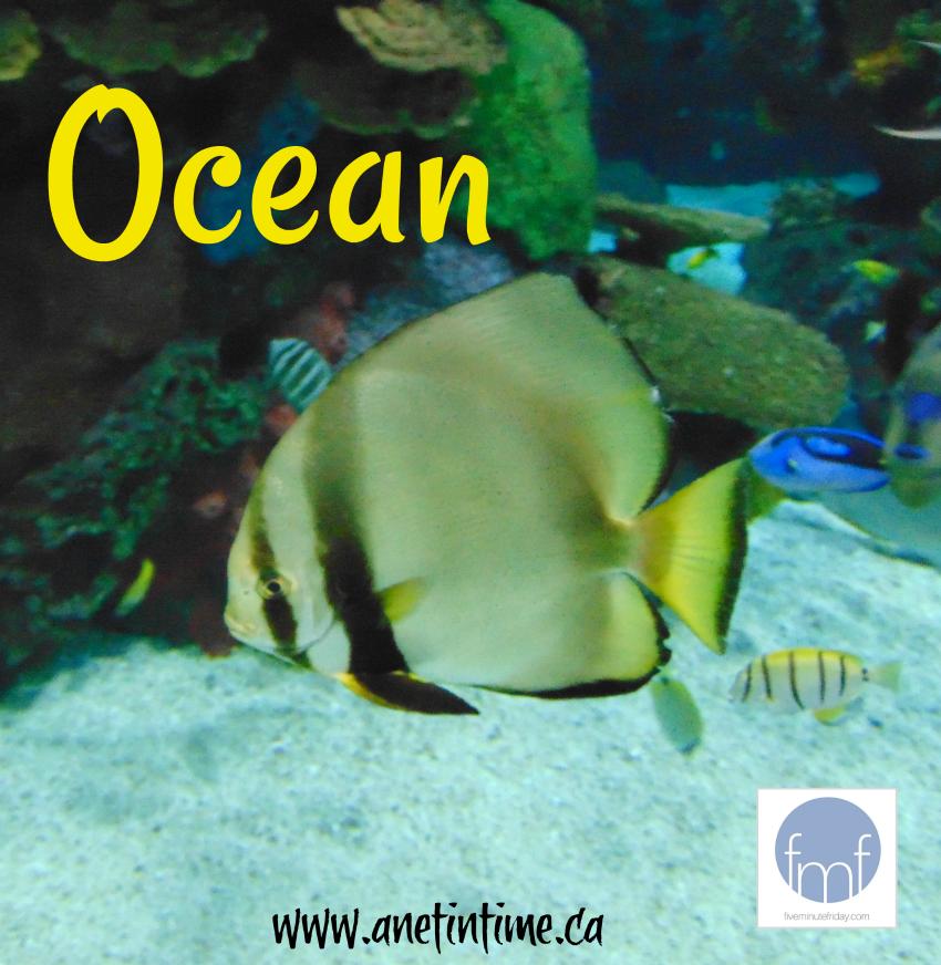 Ocean, a poem