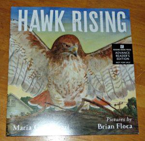 hawk rising, book cover