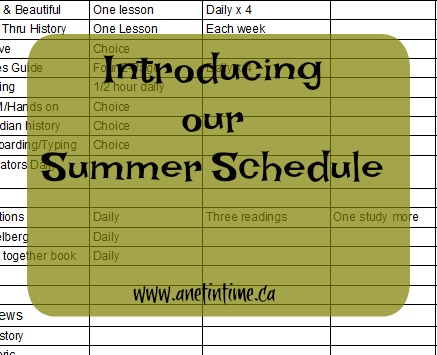 Introducing our Summer Schedule