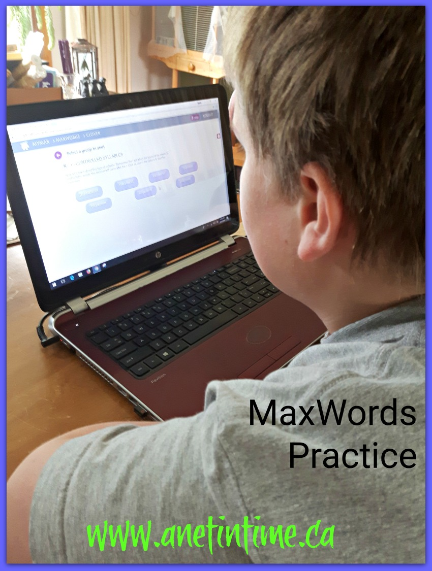 MaxScholar Reading Intervention Program MaxWords