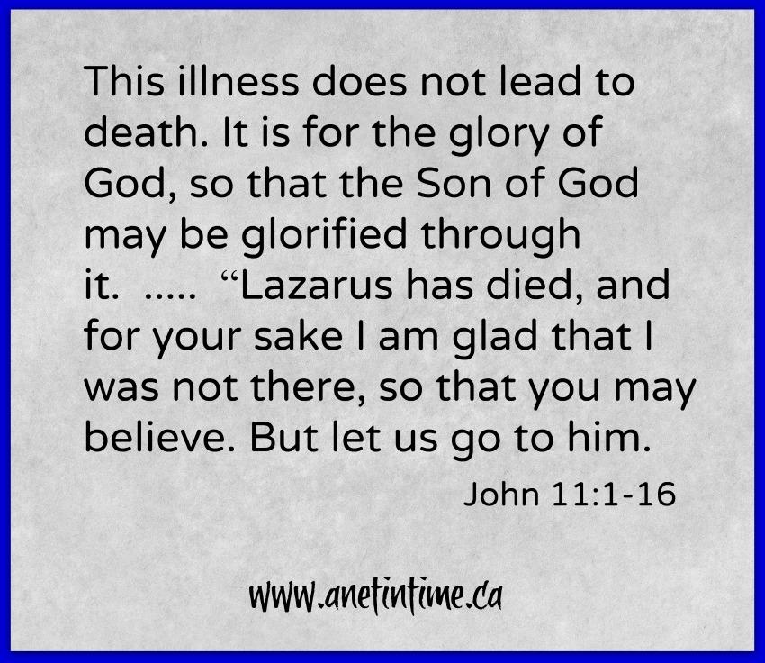 text from John 11:1-16