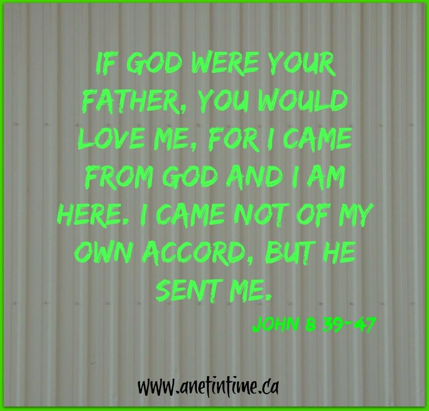 John 8:39-47