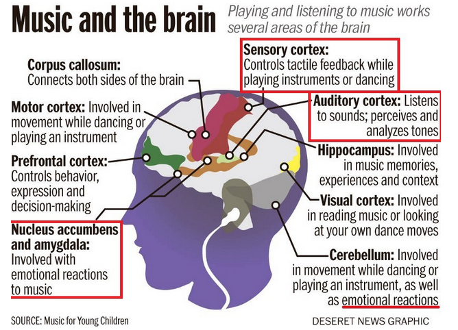 music and the brain infogram