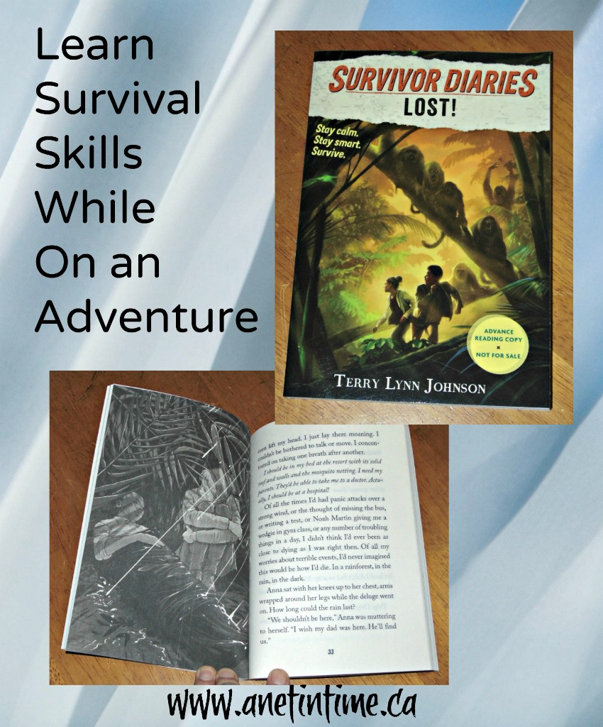 survivor diaries Lost