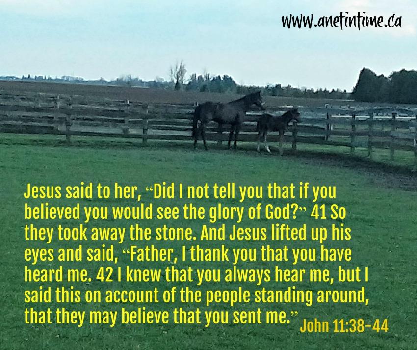 John 11:38-44
