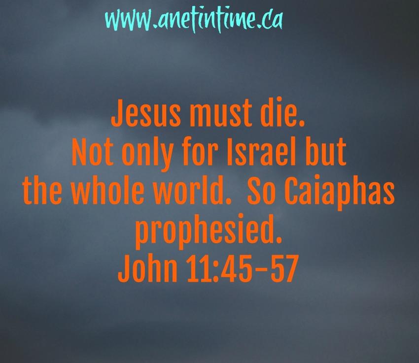 John 11:45-57