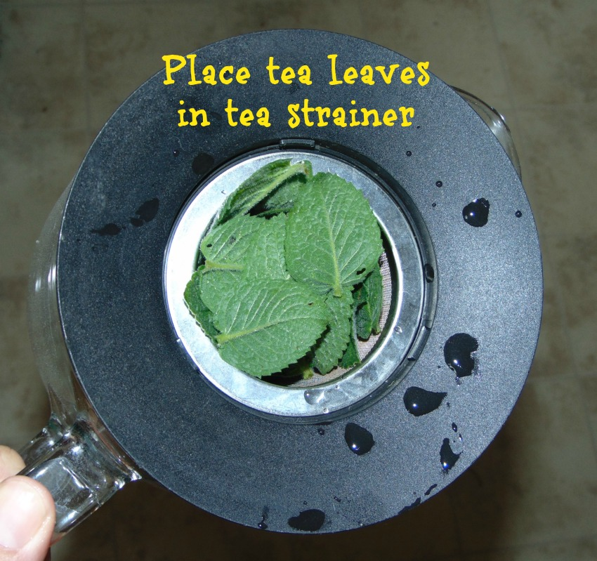 Mint tea in strainer