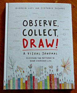 Observe, Collect, Draw - a visual journal