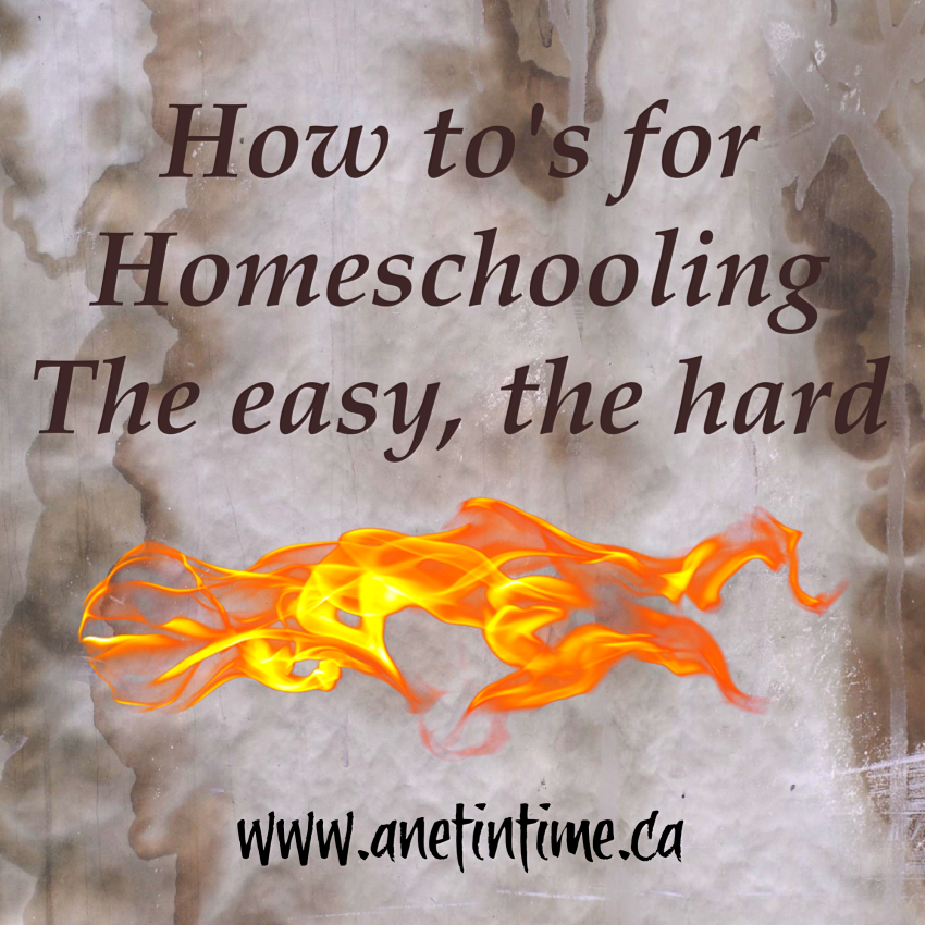 The how to's of homeschooling easy and hard text.