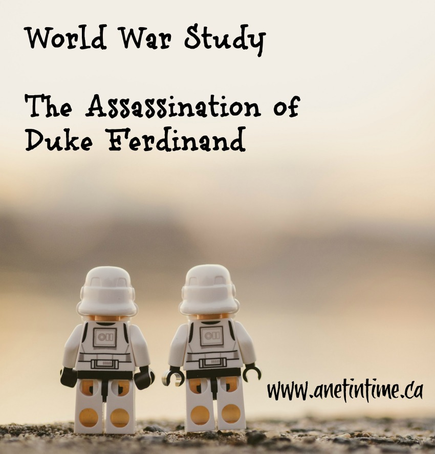 assassination of Duke Ferdinand