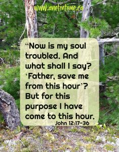 A Troubled heart … a purpose