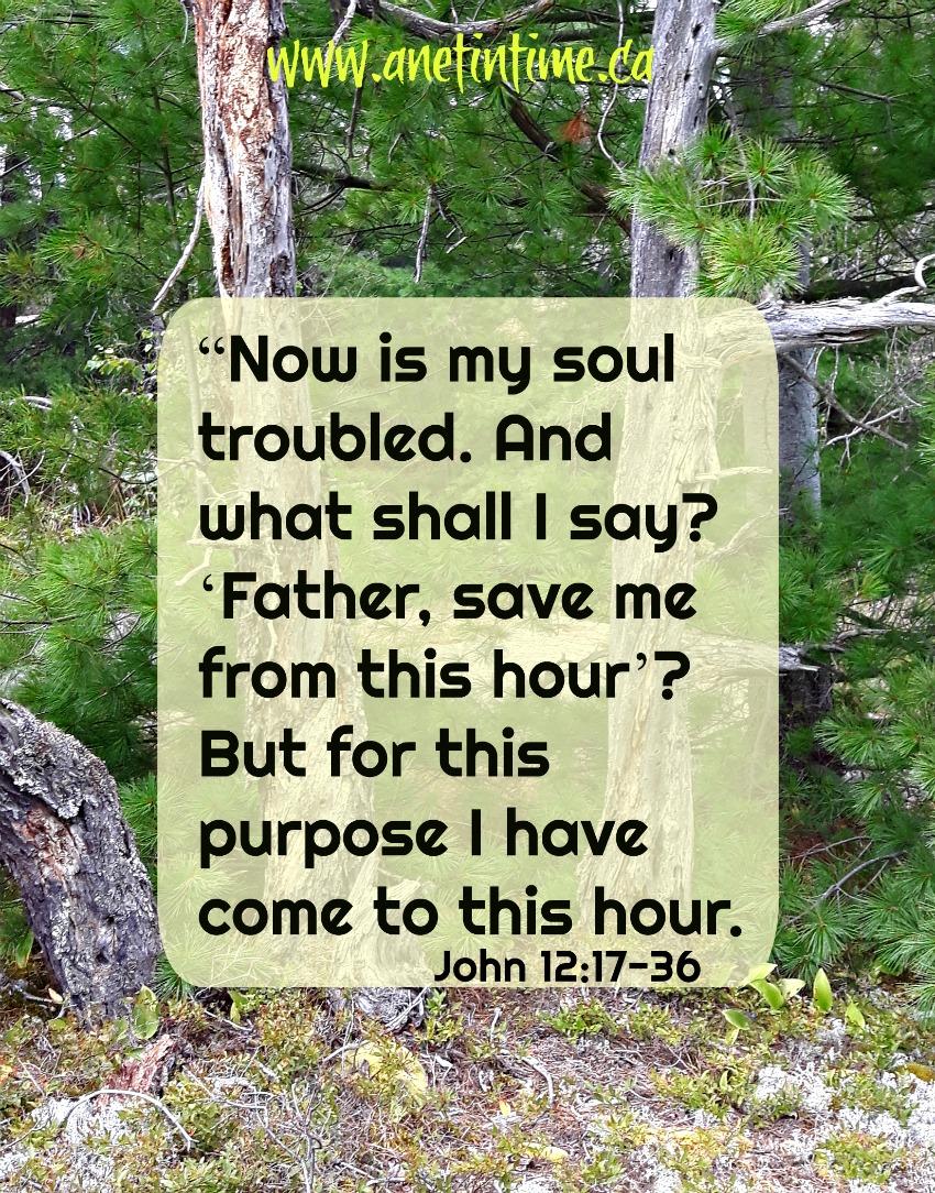 John 12:27-36 devotional