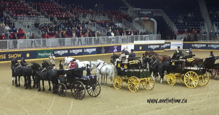 Four horse hitch, Royal Winter Fair