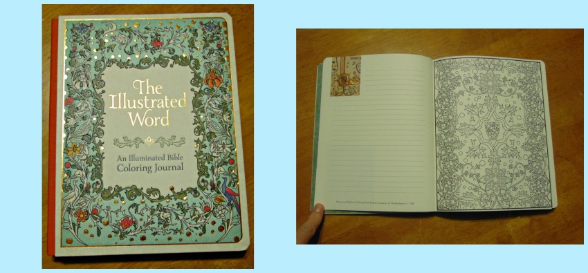 The Illustrated Word Colouring journal