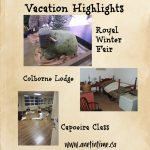 Vacation Highlights