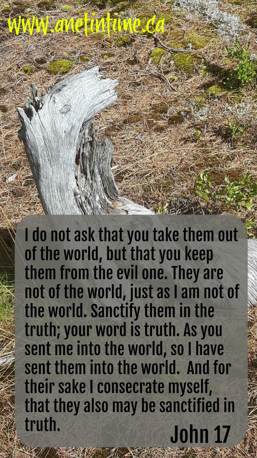 John 17 High Priestly Prayer