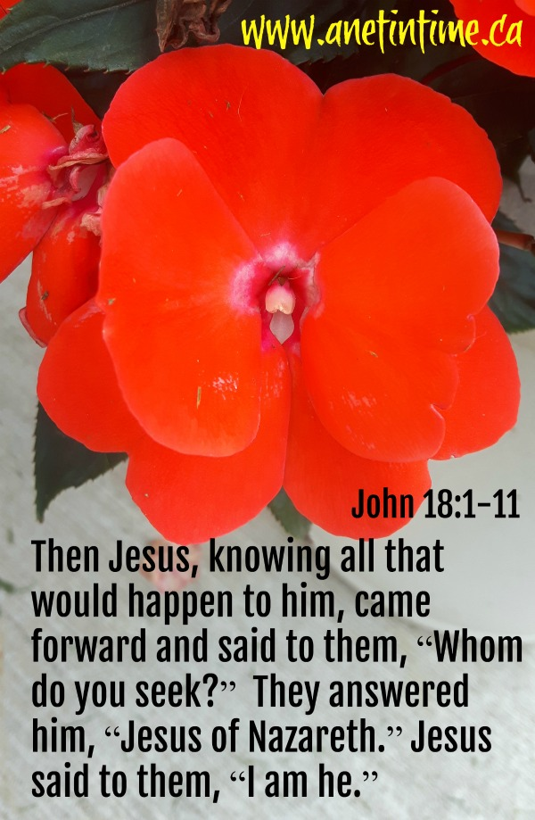 John 18:1-11, Jesus is betrayed by one who knew him well.