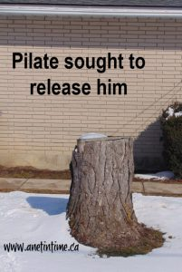 Pilate sought to release him. John 19:1-166
