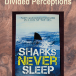 Sharks Never Sleep