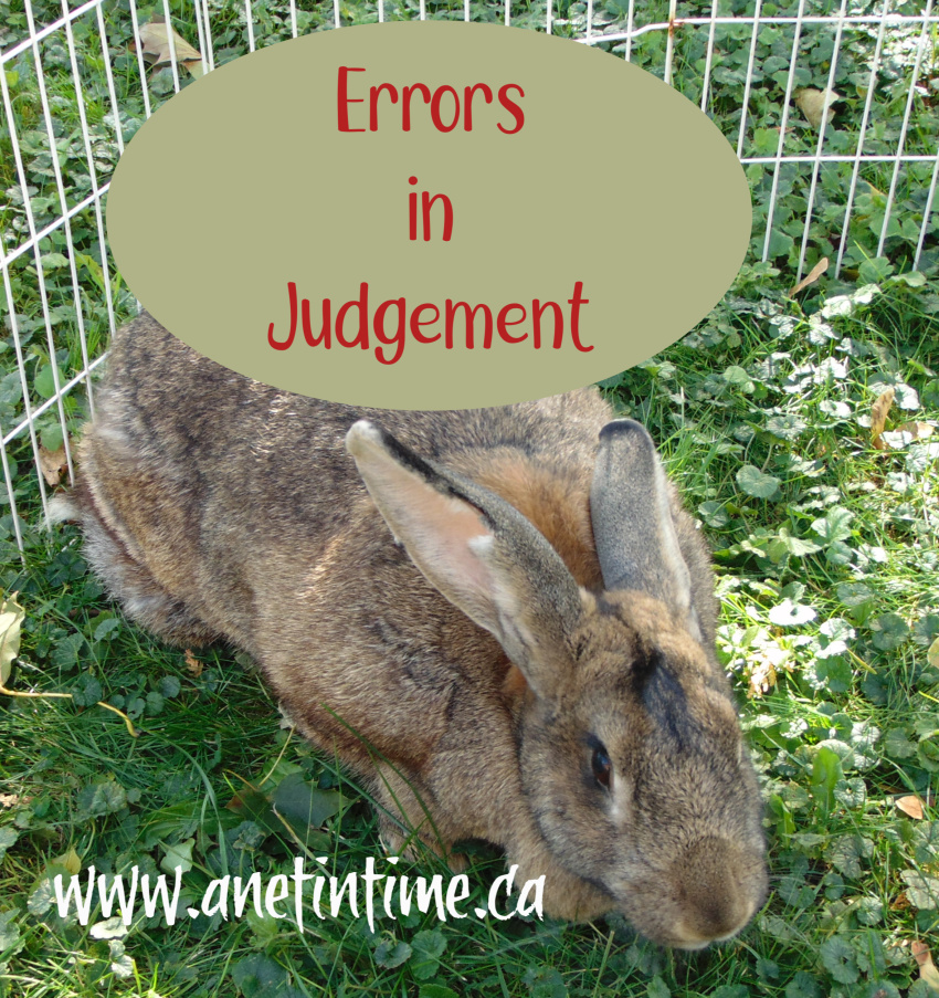 Errors in Judgement