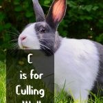 C is for Culling Well