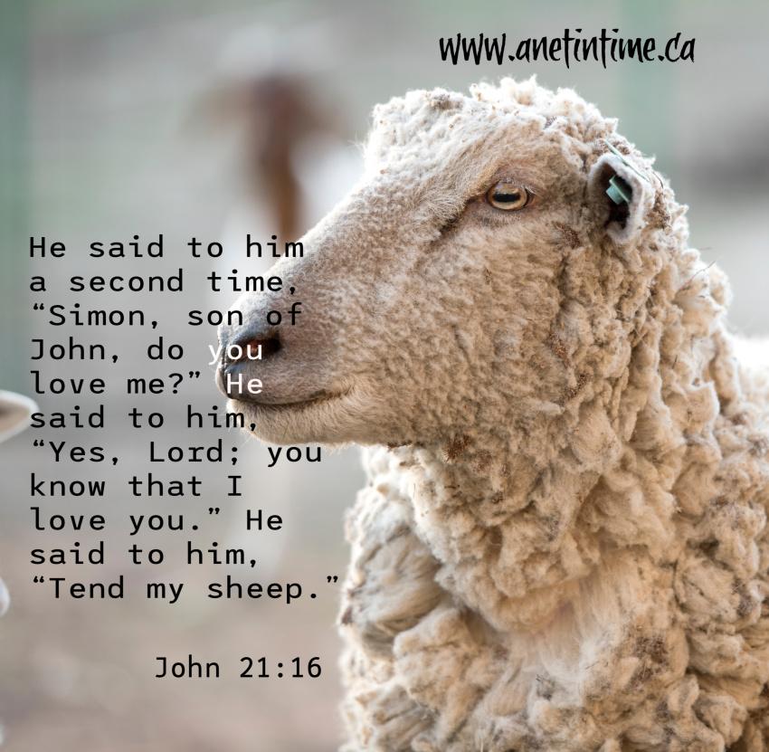 John 21:15-19