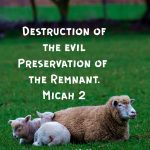 Destruction and Preservation