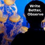 Write Better, Observe