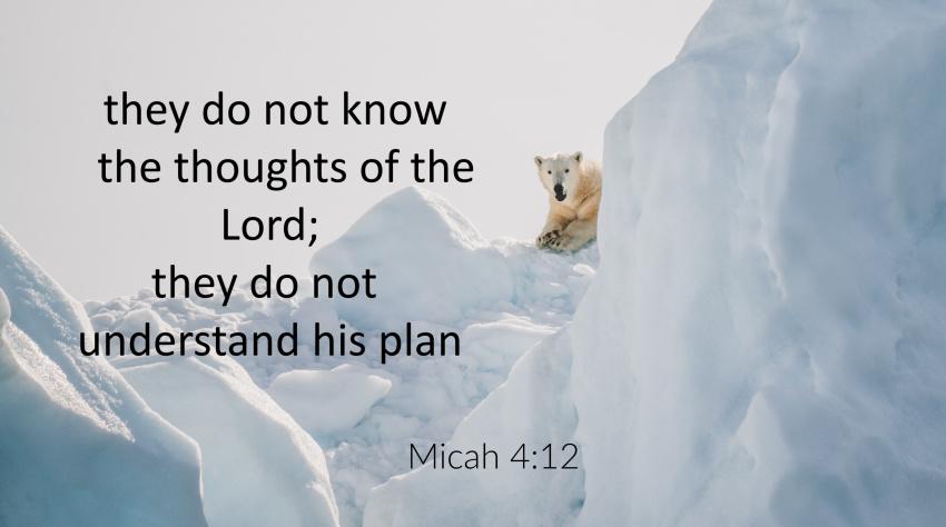 Micah 4:6-13