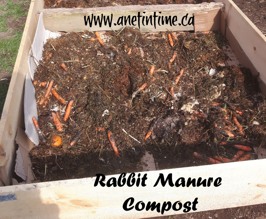 rabbit manure compost