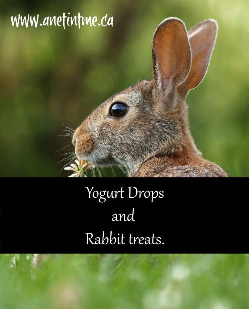 Yogurt Drops and Rabbit treats
