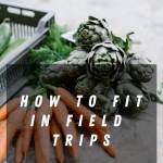 How to fit in Field Trips?