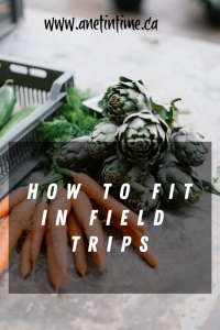 How to fit in field trips
