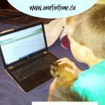 Calvert Homeschool Review