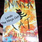 Ninja Cat: Whiskers of Doom